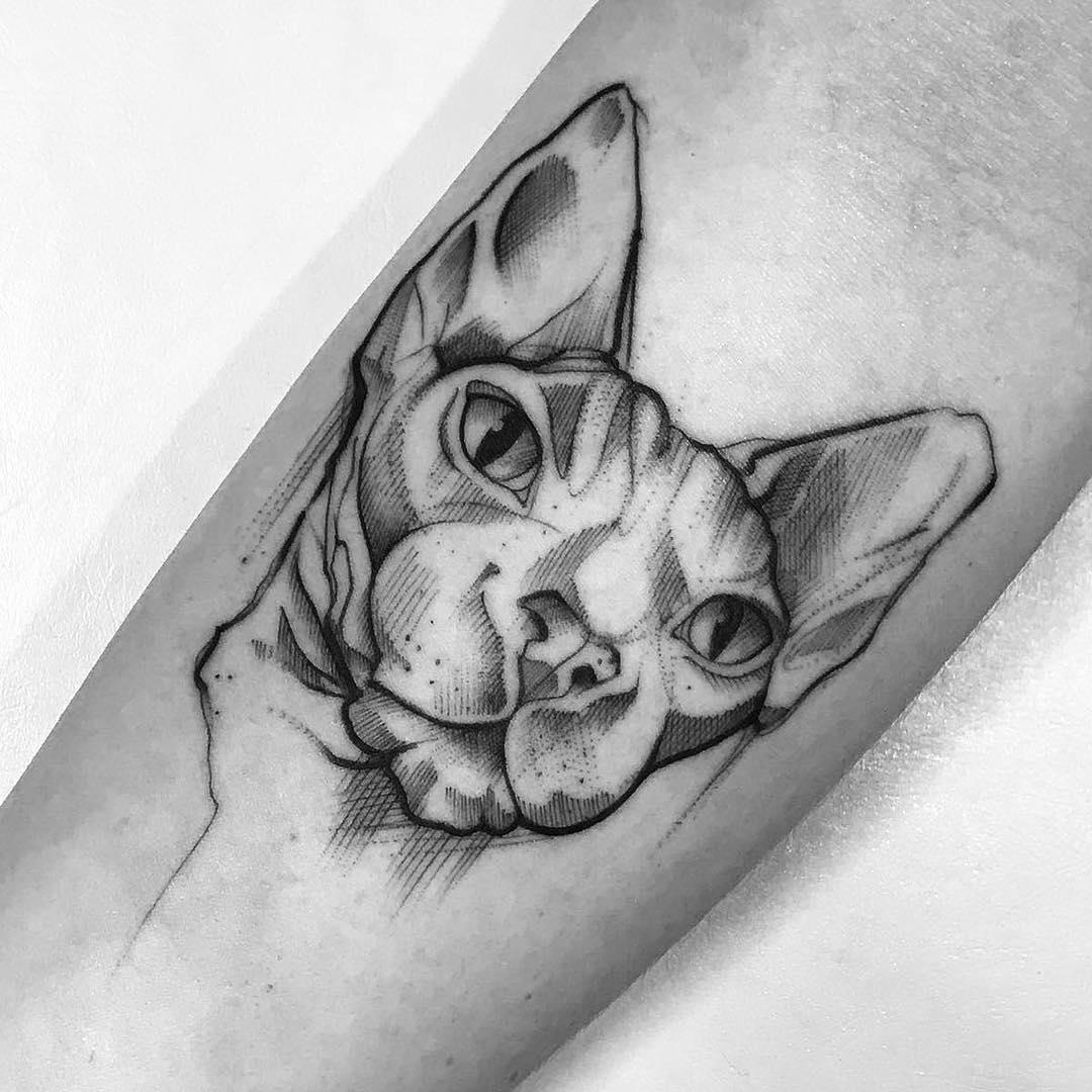 小臂黑灰点刺风斯芬克斯猫纹身图案图片